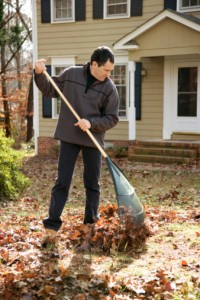 Leaf Removal This Fall