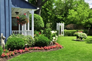 Why Winter Is The Best Time To Plan Your Landscaping Project