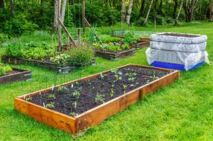 Spring Landscaping Trends Of 2018